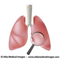 Healthcare icon (lung), medical drawing.