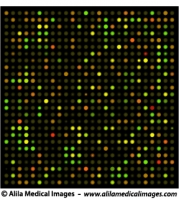 DNA microarrays chip, medical drawing.